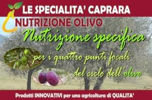 caprara-nutrizione-olivo-2016