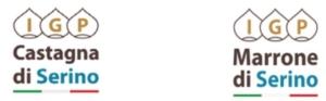 castagna-e-marrone-di-serino-igp14set2018guue