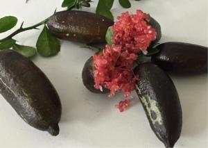 caviar-lime-cinquemani