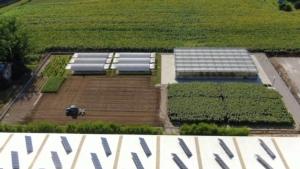 center-for-plant-nutrition-fonte-fomet