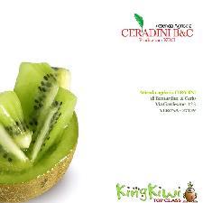 ceradini-king-kiwi-actinidia-500