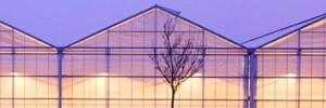 cespevi-seminario-serre-2009