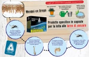 ciclo-zanzara-fonte-adama-kollant