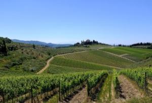 colline-paesaggio-vitu-toscana-chianti-by-davide-taviani-wikipedia