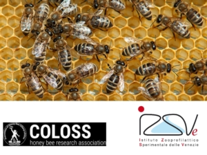 coloss-questionario-alveari-by-modificato-izsve-coloss-org-jpg