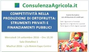 competitivita-produzione-ortofrutta-consulenza-agricola-convegno-macfrut-20160914