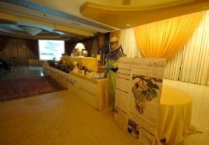 congresso-uva-da-tavola-sala-congressi