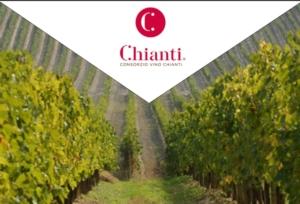 consorzio-chianti-logo-vigna-by-consorzio-vino-chianti-modificata-matteo-giusti-jpg