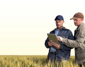 consulenti-consulenza-agricoltura-in-campo-tablet-via-quaderno-di-campagna