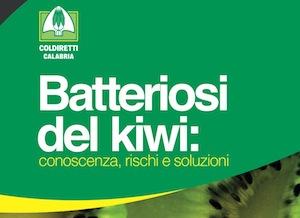 convegno-coldiretti-calabria-batteriosi-luglio-2011