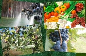 convegno-indicatori-uso-sostenibile-agrofarmaci-bari-27marzo2012