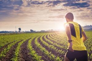 correre-campi-campo-fattoria-sportiva-by-giorgio-pulcini-adobe-stock-750x500