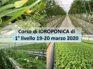 corso-idroponica-fritegotto-marzo2020