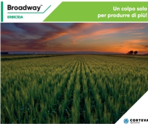 corteva-broadway-20211.jpg