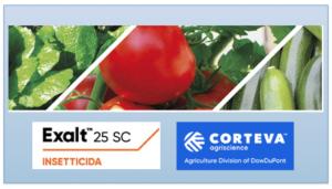 Exalt<sup>™</sup> 25 SC: la nuova proposta di Corteva contro gli insetti