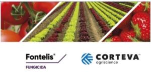 Fontelis<sup>®</sup>: alleato degli orticoltori