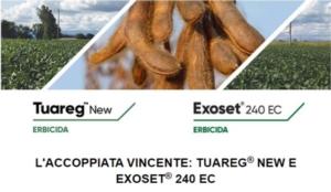 Tuareg<sup>®</sup> New ed Exoset<sup>®</sup> 240 EC: coppia d'assi per la soia