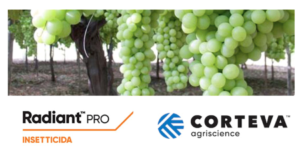 corteva-radiant-pro-tignole-uva-tavola