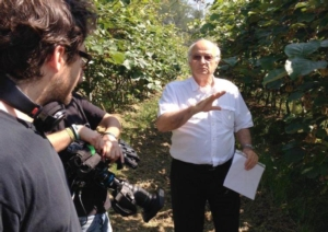 costa-professore-lezioni-youtube-kiwifruit-of-italy