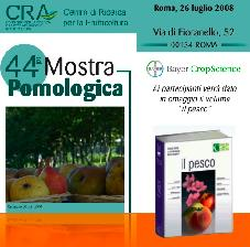 cra-mostra-pomologica-26-luglio-libro-bayer-2008-pesco