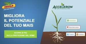 dekalb-acceleron-marzo-2021-fonte-dekalb