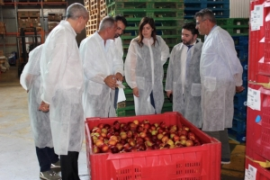 delegazione-comagri-20190726-agrintesa-fonte-confcoperative-fedagripesca-emilia-romagna