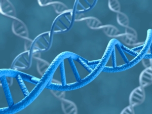 dna-by-norman-blue-fotolia-750