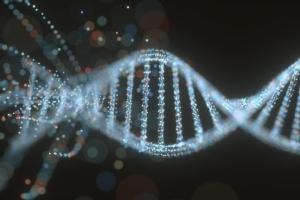 Miglioramento genetico, l'unione fa la forza - Plantgest news sulle varietà di piante