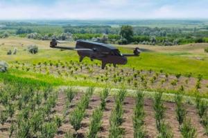 drone-parrots-bluegrass-fields