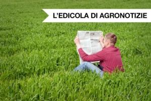 edicola-di-agronotizie-giugno-2020-fonte-agronotizie