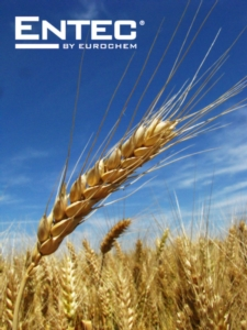 entec-fonte-eurochem