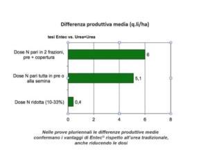 Entec<sup>&reg;</sup> e Utec<sup>&reg;</sup>: massima efficacia per mais e sorgo - EuroChem Agro - Fertilgest News