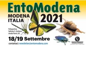 entomodena-locandina-by-entomodena-jpg