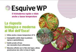 Esquive<sup>®</sup> WP: la risposta moderna e biologica al Mal dell'esca