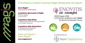 eventi-magis-enovitis-in-campo-19-20-giugno-2014