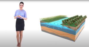 faldanet-acqua-docet-cer-mag-2021-fonte-video-canale-emiliano-romagnolo