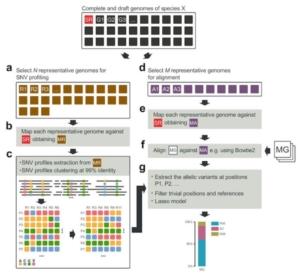 fem-microbioma-algoritmo-ceppi-batterici-fonte-fondazione-edmund-mach