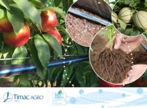 fertirrigazione-nutrizione-fonte-timac-agro
