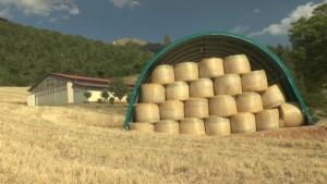 fienili-provvisori-2017-centro-italia-un-anno-dal-terremoto-by-barbara-righini-agronotizie