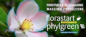 Tre errori da non fare durante la fioritura - colture - Fertilgest