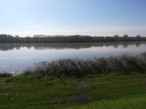 fiume-po-autore-donatello-sandroni