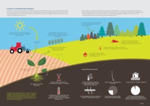 Carbon farming: azioni concrete o ancora blablabla?