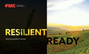 fmc-resilient-ready-report-2020
