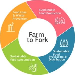 foodfarm2forkring