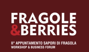 fragole-berries-20160317