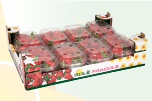 fragole-coop-sole