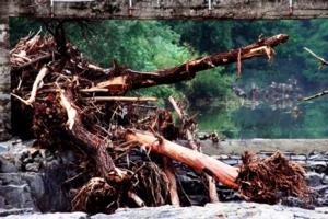 frana-alluvione-floodcn-7712-morguefile-clarita