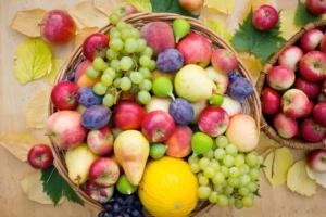 frutta-ortofrutta-by-pilipphoto-fotolia-750