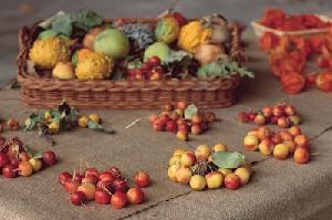 frutti-antichi