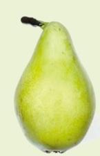 frutticoltura-ferrarese-maggio2012